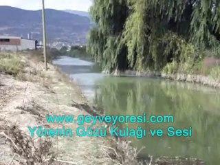 Kanal Geyve Mesire Çılgın Proje Medya Haber Geyve Yöresi