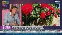 Le Rendez-vous du jour: Jennifer Guesdon, journaliste BFM Business, dans Paris est à vous - 11/10