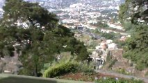 Madeira Jardim Botanico da Madeira Botanischer Garten (1)