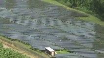 Commune de Grand-Rivière : Pont, fôret et Panneaux Photovoltaïques