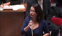 """""""Nous voulons le retour des services publics dans les territoires ruraux"""" - Cécile Duflot lors des #QAG du 08/10/13"""