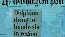 Headlines: Virus behind dolphin deaths