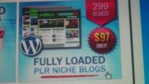 299 PLR Niche Blogs For 30 Cents Per Blog!