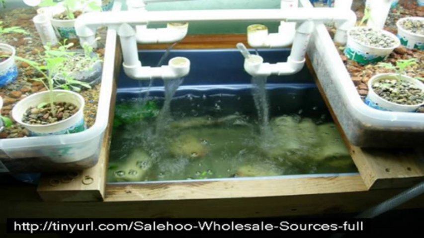 easy diy aquaponics download,