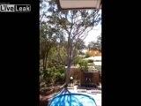Régis coupe un arbre dans son jardin