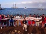 Огромную ремень-рыбу вытаскивали 15 человек