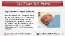 Fases Del Parto: Cuales Son Las Fases o Etapas Del Parto o Nacimiento Del Bebé