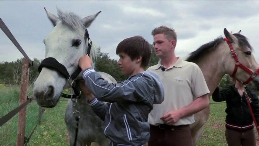 EPISODE N°1 : Le choix des poneys