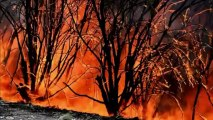 Australia crews battle to tame wildfires