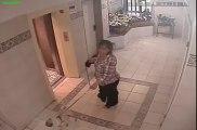 Chien vs Ascenseur : il échappe à la mort