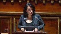 Alur : discours d'ouverture de Cécile Duflot au Sénat