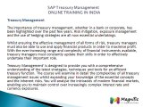 SAP Treasury and Risk Management ONLINE TRAINING IN INDIA@magnifictraining.com