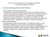 SAP Financial Supply Chain Management(FSCM)ONLINE TRAINING INDIA@magnifictraining.com