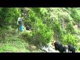 Los árboles españoles repueblan los barrancos de las Tierras Altas de Etiopía
