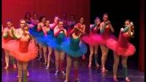 Spectacle Ecole de Danse de Cambrai - Sylvie Barret - Illusion 2013 - Partie 1