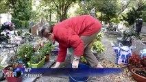 Au cimetière des chiens d'Asnières, les animaux reposent en paix