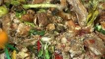 Recyclage et valorisation des déchets organiques dans plusieurs magasins Carrefour de Midi-Pyrénées