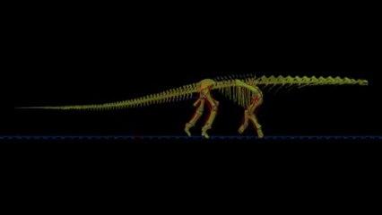 Les pas de géant d'un dinosaure de 40 mètres de long
