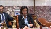 Intervention de Danielle AUROI lors de la discussion générale de la 2ème séance du 29 octobre 2013, concernant le Projet de Loi sur les Finances 2014 et plus particulièrement les enjeux budgétaires européens, à Monsieur Thierry REPENTIN, Ministre délégué