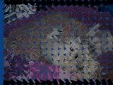 Bébés Epice -I- Septembre 2013 1ère partie