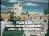 Tintin Huile Fruit d'or Tournesol - 1985 - 2