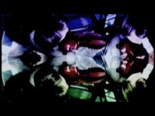 Bertrand Burgalat  & Robert Wyatt - This Summer Night