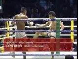 The fighting techniques of MuayThai Boran