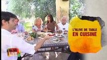 Saveurs d'Olives Saveurs d'Espagne - Episode 4
