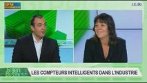 Les monnaies complémentaires à vocation environnementale et les compteurs intelligents dans l'industrie: Etienne Hayem et Laurent Romeo dans Green Business - 03/11 3/4