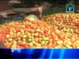 Bulletin   05-11-13 (raah.tv)