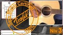 Gaby oh Gaby - Alain Bashung [Tuto Guitare] by Terafab