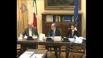 Roma - Audizioni su organizzazione forze armate (07.11.13)