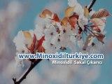 Minoxidil Sakal Çıkarıcı Sipariş