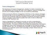 Sap TRM/Treasury Real Time Experts Training Modules@magnifictraining.com