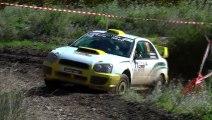 Rallye Terre de Vaucluse 2013 [HD]