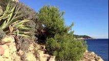 Plage Ramatuelle / Plage saint Tropez / Beach