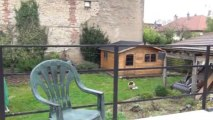 Dijon proche St Bernard Maison 200m2 - Agence CARREZ immobilier