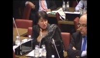Assemblée nationale Commission Affaires Européennes Audition de Thierry Repentin Ministre des Affaires Européennes 29 octobre 2013