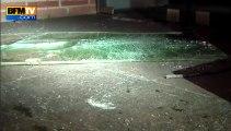 Toulouse: deux sangliers sèment la panique en centre-ville -14/11