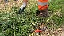 Investigations géologiques pour la recherche d'un site pour le stockage des déchets radioactifs FA-VL