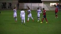 #LAPToulouseFC - But de Wissam Ben Yedder