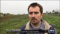 Terres agricoles : Les jeunes agriculteurs en action