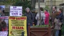 GUVERN, PROTEST IMPOTRIVA CRIMEI IN MASA!!, 16 noiembrie 2013 (12)