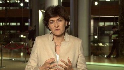 Sylvie Goulard - Chronique de Strasbourg du 18 au 21 novembre 2013