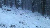 Dans la neige des Vosges (Zone naturelle de Langenfeldkoft)