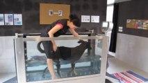 Audruicq : un centre de thalasso pour chiens !