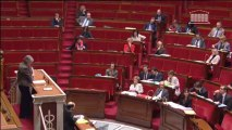 Catherine Coutelle défend la proposition de loi renforçant la lutte contre le système prostitutionnel