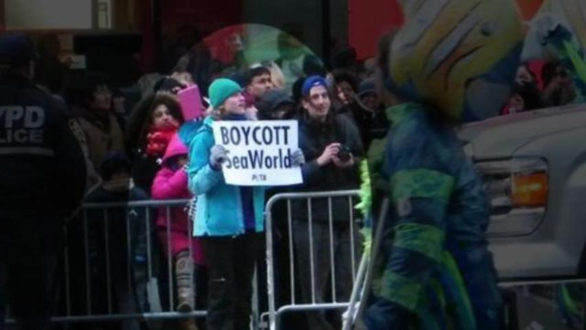12-Year-Old Girl Uses Macy's Thanksgiving Day Parade for SeaWorld Protest