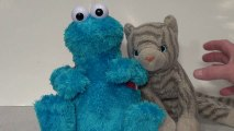 Miley Cyrus Cookie Monster PARODY of Miley Cyrus Wrecking Ball Scene and the Cat