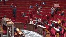 Prostitution - Intervention en discussion générale sur la proposition de loi renforçant la lutte contre le système prostitutionnel - le 29/11/2013